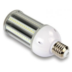 Corn Light E27 36W luce fredda