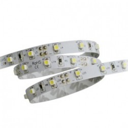 Striscia LED 72W 12V 5 mt  SMD 5050 da interno luce fredda